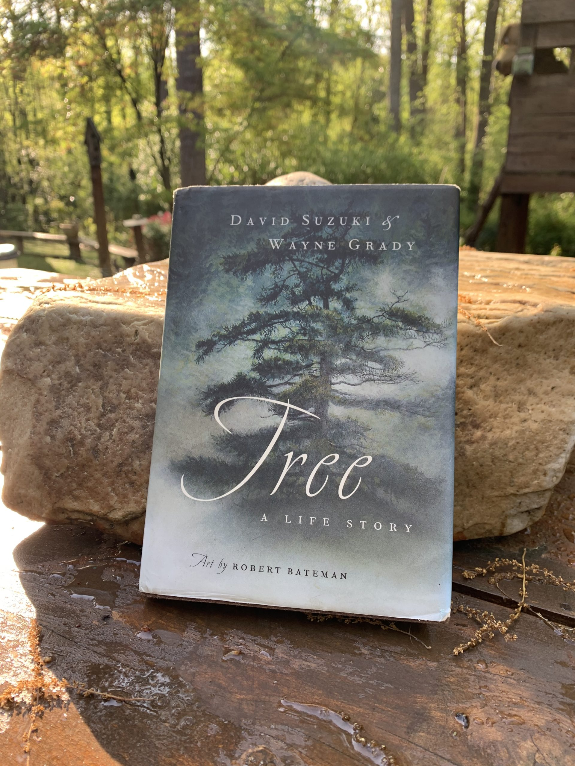 Book Review: 'Tree: A Life Story'