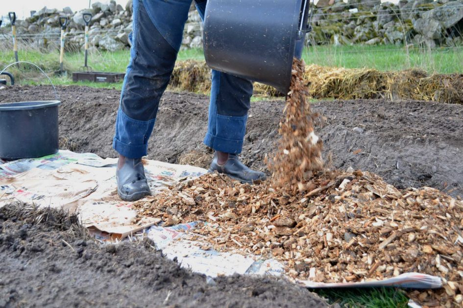 The Many Uses of Wood Chips