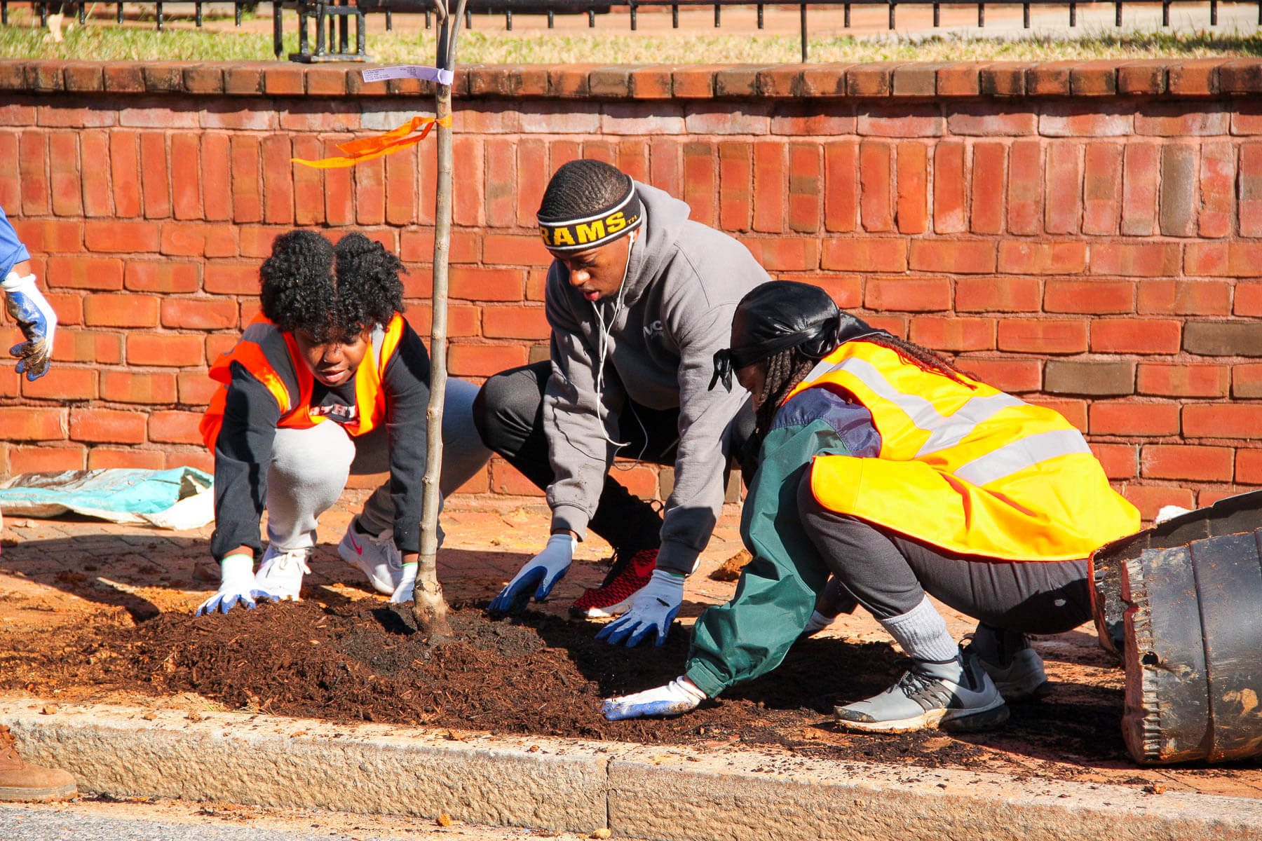 An Urban Forestry Collaborative Plants Deep Roots in RVA