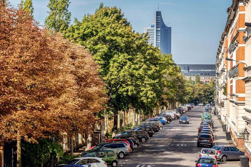Street Trees Close to Home May Reduce Risk of Depression