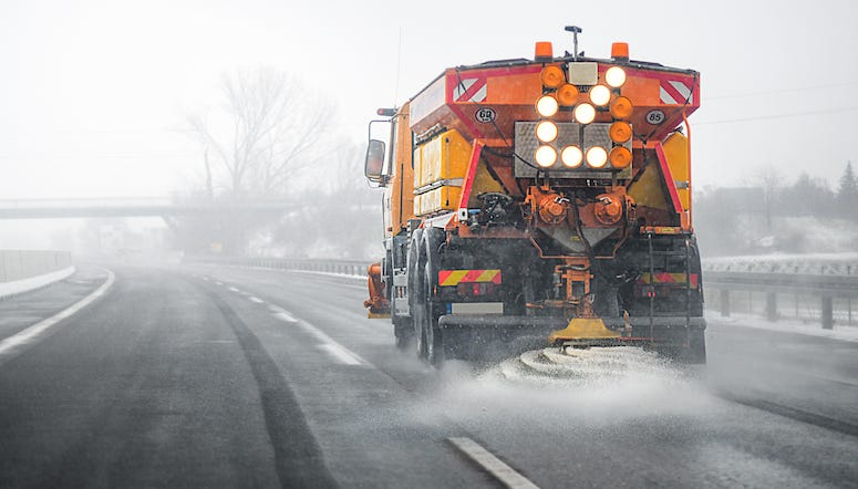 Saving Our Trees, Shrubs from Road Salt