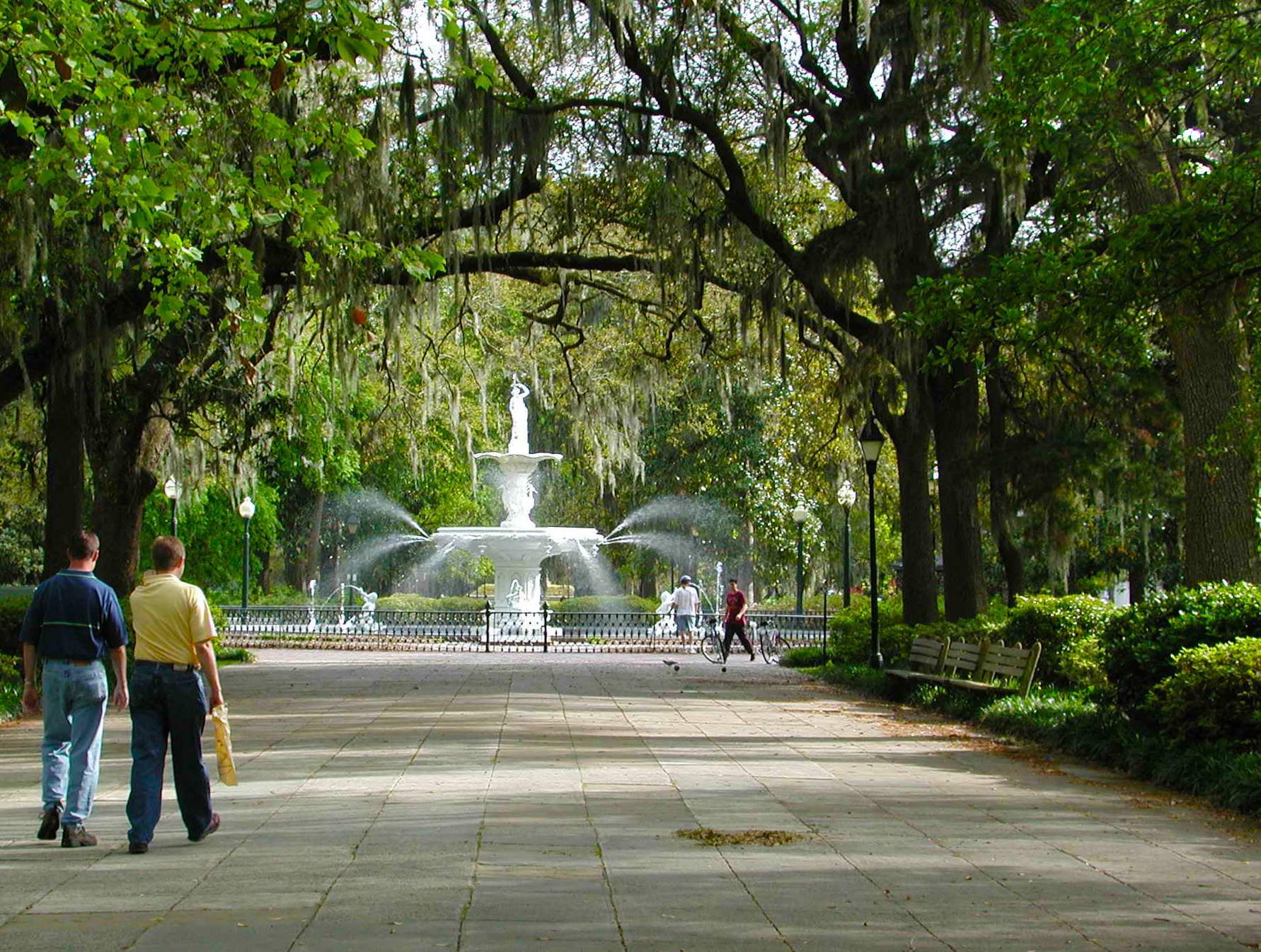 The Health of a City Depends on Its Trees