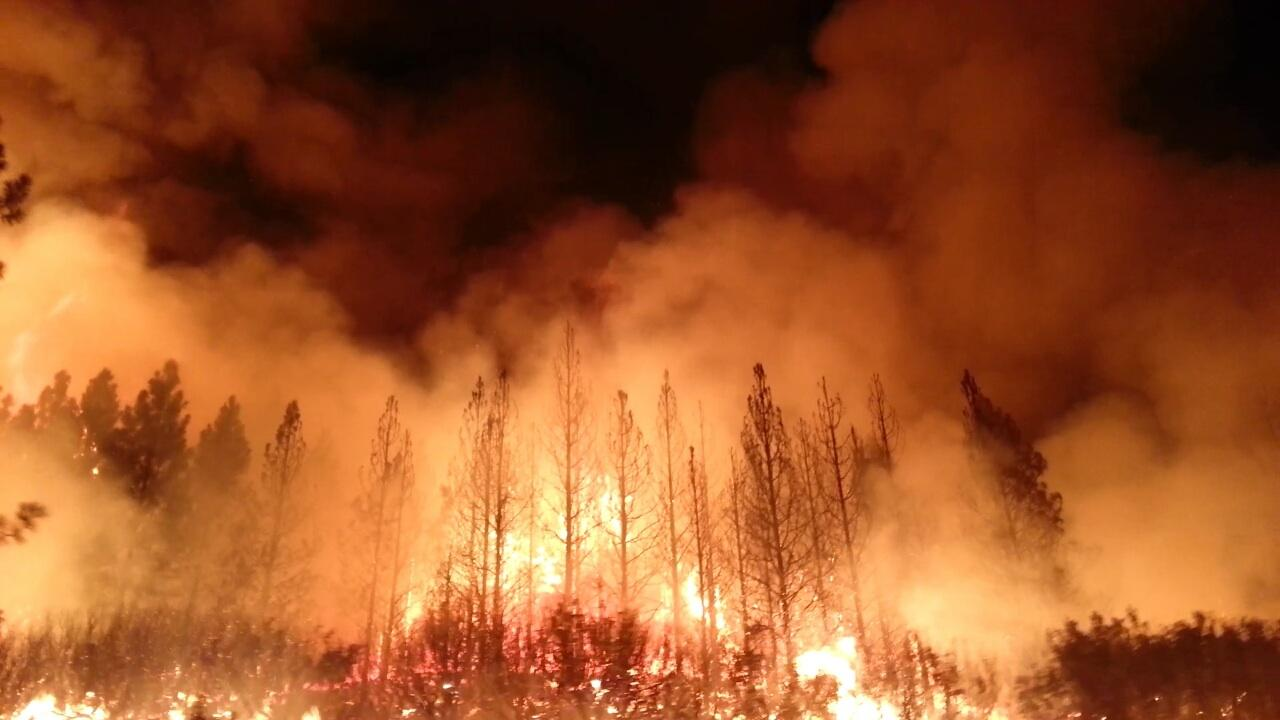 'Zombie Fires': Blazes That Refuse to Die